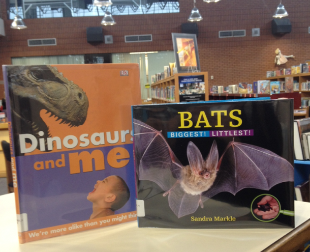 You and the dinosaurs and the bats of all shapes and sizes.